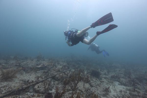 Trevor-Paglen-Dive-the-cable