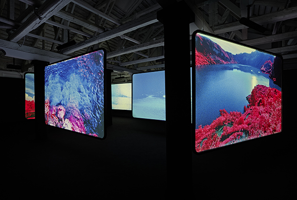 RIM12.058 The Enclave (installed 2013 Venice Biennale) HR (4) copy